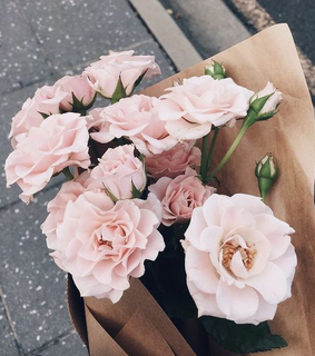 soft, pink and vintage