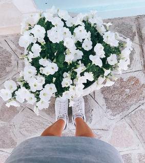 white, aesthetic and theme