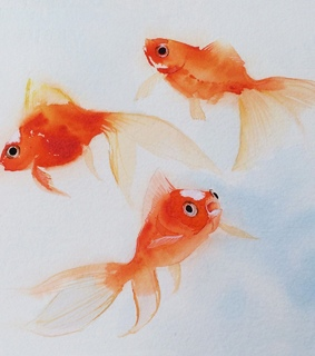 paint, goldfish and art