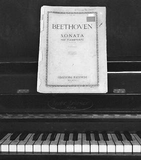 piano, Beethoven and black and white