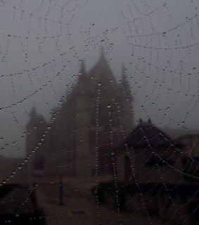 scary, spiders and gothic