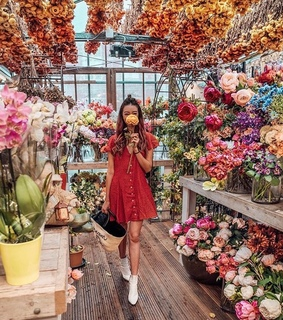 colors, aesthetic and flowers