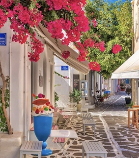 mykonos, nature and flowers