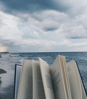 ocean, booklover and book