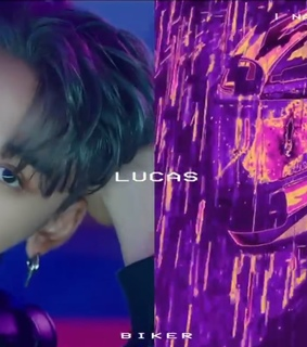 lq, icons and lucas