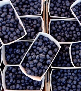 berries, blue and blueberries
