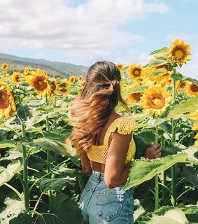 sunflower, boho and sunflowers