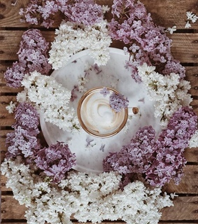 aesthetic, cup and lilacs
