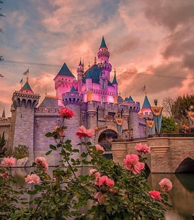 castle, cinderella and collections
