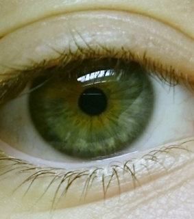 eyes, green and photography