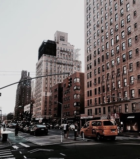 new york, feed and tumblr