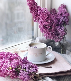 cup of coffee, coffee time and spring flowers