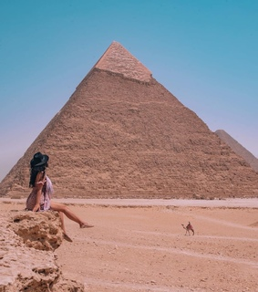 egypt, travel inspo and camel