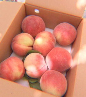 fruit, aesthetic and peach