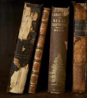 old books, vintage and books