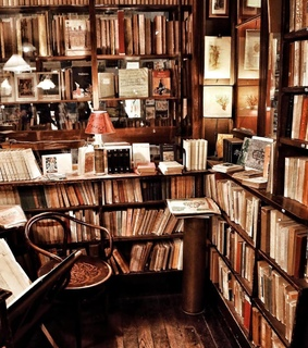 bookstore, book and bookworm
