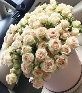 flower bouquet, flowers and rose