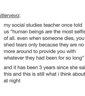 humans, social studies and <3