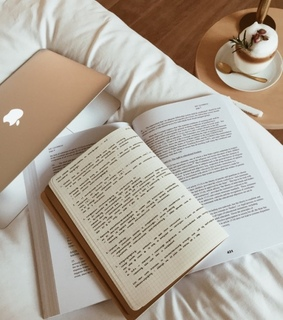 read, macbook and school