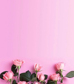 M, roses and photography