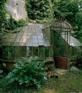 pretty, forest and greenhouse