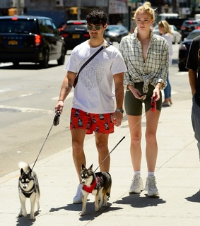 sophie turner, jonas brothers and dogs