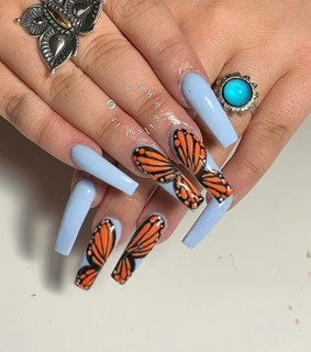 acrylics, butterflies and claws