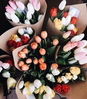 flower, flowers and aesthetic