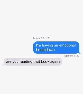 books, bookworm and chat