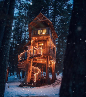 mountains, cabin and tree house