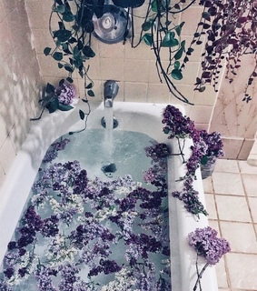 beautiful, tub and flower