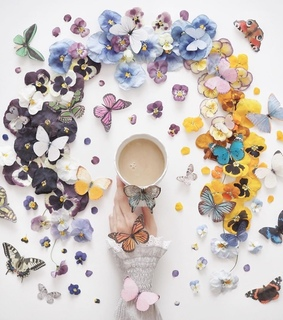 butterflies, butterfly and coffee