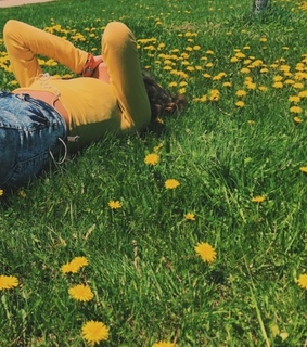 dandelions, flowers and girl