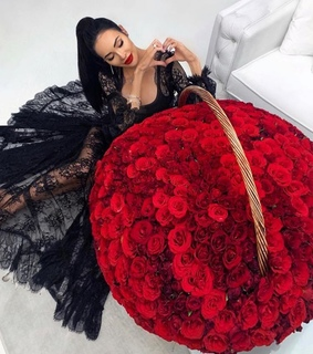rose, lifestyle and beauty