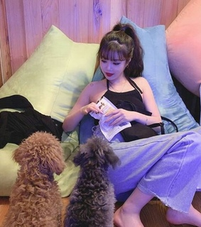 asian, dogs and g idle
