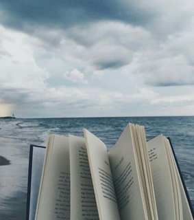 amazing, blue and book