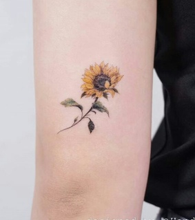Tattoos, flowers and ink