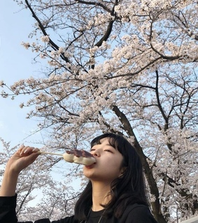 aesthetic, aesthetically pleasing and cherry blossoms
