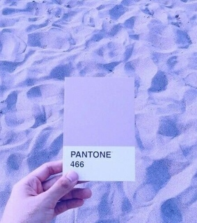 466, color and lavender