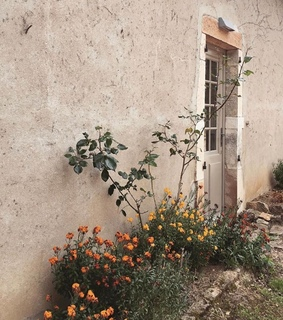 mediterranean, flowers and photography