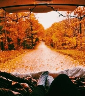 aesthetic, autumn and camp