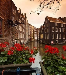 Houses, amsterdam and beautiful city