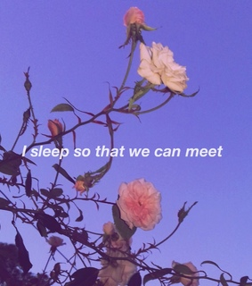 lilac, pink and we