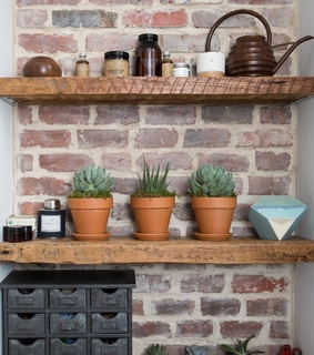 brick wall, plants and home decor