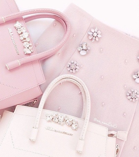 pale pink, jewels and purse