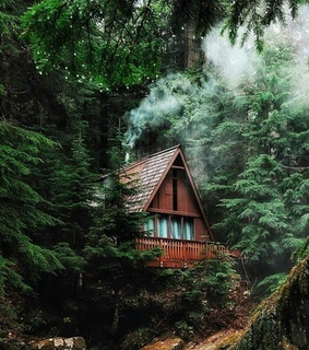 architecture, cabin and cozy