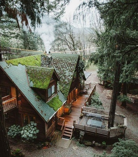 architecture, cozy and forest