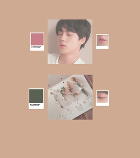 aesthetic, bts and jin