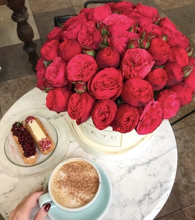 coffee, flower and red