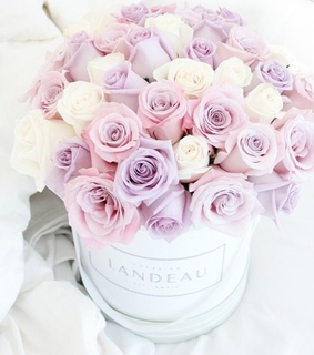 box, dreamy and flowers